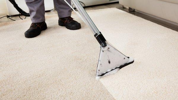 Legjobb szőnyegtisztítás